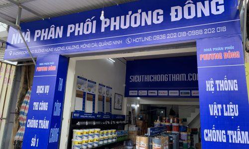 Phuong Dong (1)