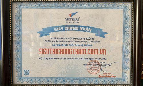 Phuong Dong (9)